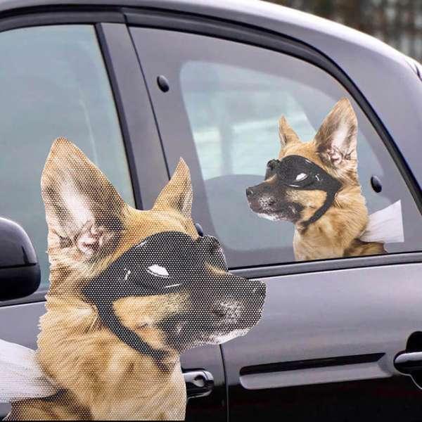 Autofenstersticker ride with a dog am Fenster - aufgeklebt